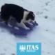 come divertirsi sicuramente sulla neve